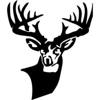 Big  Buck Window Decal