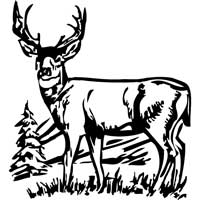 Big Muley Decal